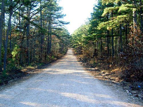 5 Acres In Mark Twain Forest : Winona : Shannon County : Missouri