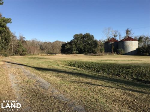 Seabrook Commercial Property : Seabrook : Beaufort County : South Carolina