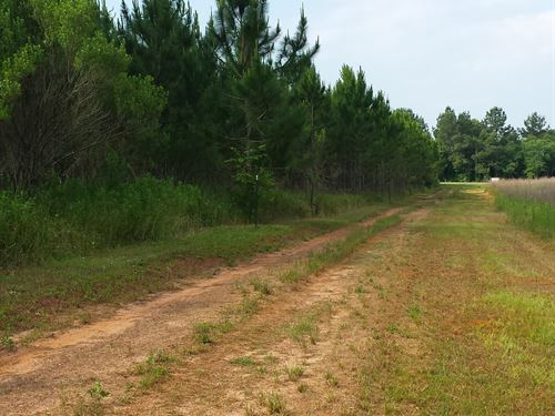 Hamilton - North Ridge Tract : Leesburg : Lee County : Georgia