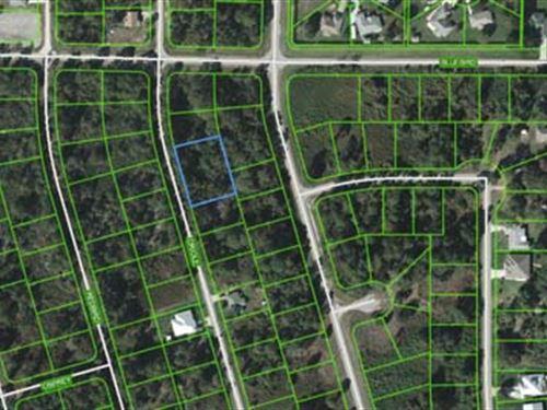 Multi-Seller Auction : Lake Placid : Highlands County : Florida