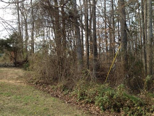 4 Acres With Marketable Timber : High Point : Guilford County : North Carolina