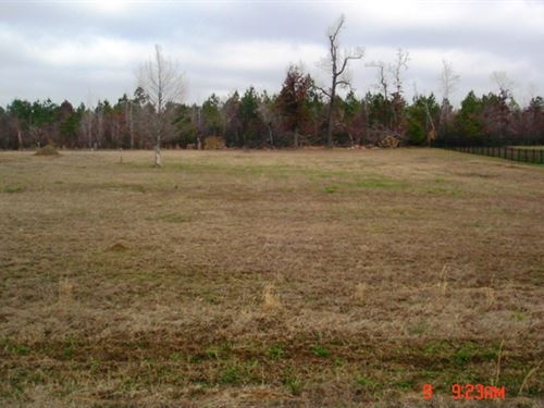 Lot For Sale In Louisville, Ms : Louisville : Winston County : Mississippi