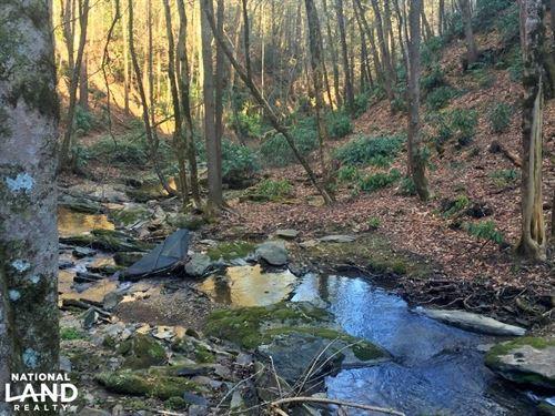 Creekfront Lot In Del Rio : Del Rio : Cocke County : Tennessee