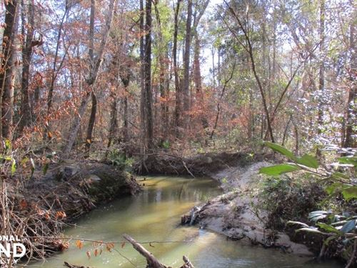 Fort Gaines Creek Front Homesite : Fort Gaines : Clay County : Georgia