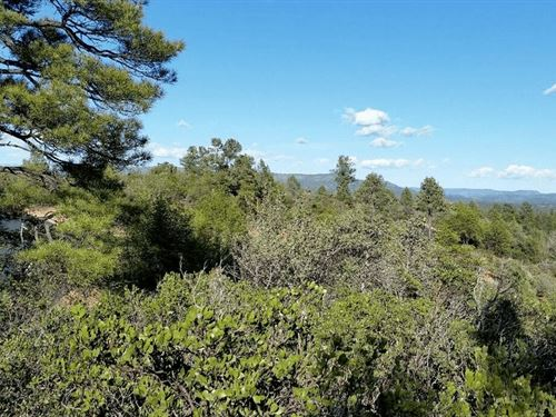 .53 Acre Vacand Land In Gila Count : Payson : Gila County : Arizona