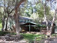 Ramsey Canyon Beauty : Hereford : Pima County : Arizona