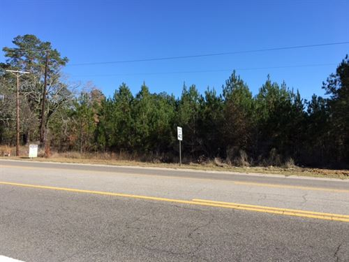 Commercial Land On Hwy 13 N : Columbia : Marion County : Mississippi