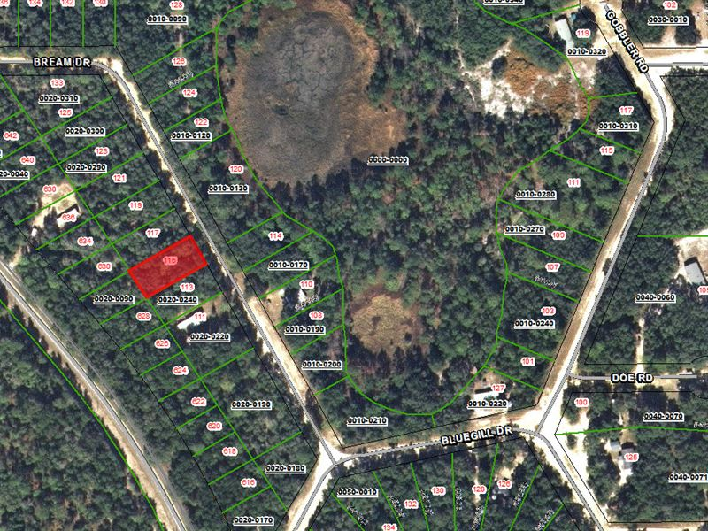 Land Sale With Financing Available : Interlachen : Putnam County : Florida