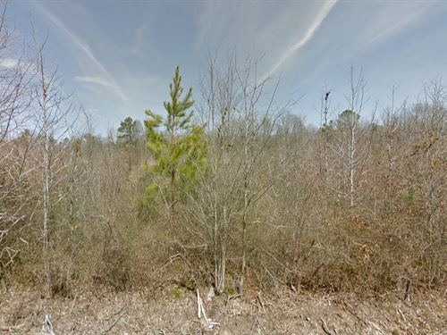 Mobile Home Land For Sale : Pine Bluff : Jefferson County : Tennessee