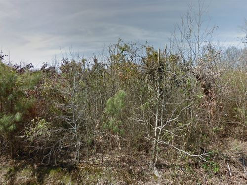 Residential Lot4sale In Pine Bluff : Pine Bluff : Jefferson County : Arkansas