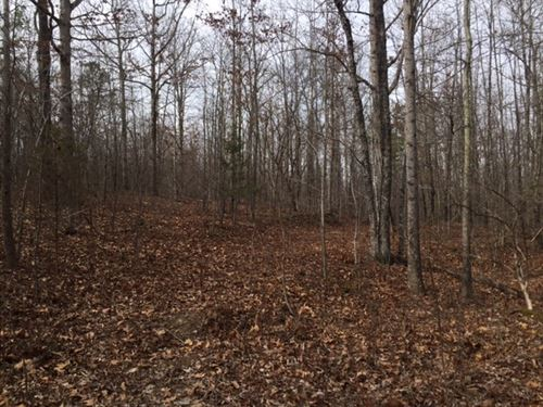 2.4+/- Acres Bank Owned Wooded Lot : South Pittsburg : Marion County : Tennessee