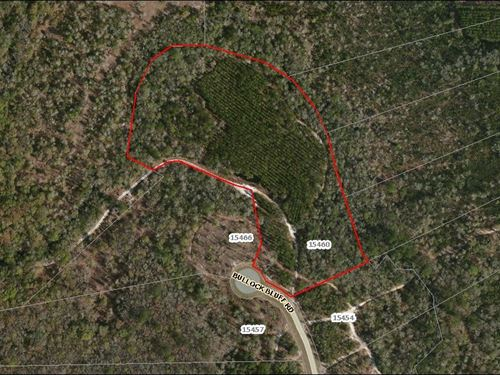 Lot 90- Deep Creek Plantation : Bryceville : Nassau County : Florida
