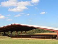 Tk Ranch : Montgomery : Montgomery County : Texas