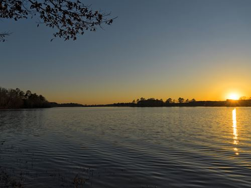 Off-Season Lakefront Land Sale : Sylacauga : Talladega County : Alabama