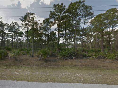 Residential Lot For Sale Alva, Flor : Alva : Lee County : Florida
