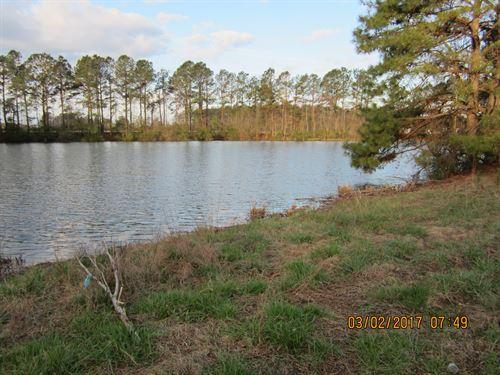 Mini Farm-Ranch & 3Ac Pond : Newton Grove : Sampson County : North Carolina