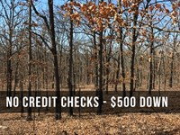 Great Lot With Paved Road And Trees : Edwards : Camden County : Missouri