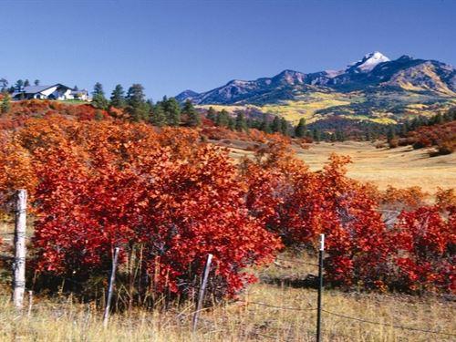 Reserve At Pagosa Peak Lot 89 : Pagosa Springs : Archuleta County : Colorado