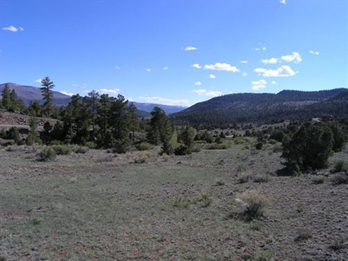 Bear Creek Acreage : South Fork : Rio Grande County : Colorado