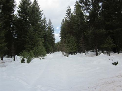 Swede Bluff Estates, Lot 20 : Libby : Lincoln County : Montana