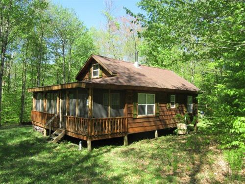 Woodland Cabin Near State Forest : Florence : Oneida County : New York