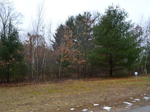 Buildable Rural Country Lot : Oxford : Marquette County : Wisconsin