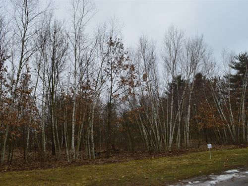 Lot 5 Buildable Rural Country Lot : Oxford : Marquette County : Wisconsin