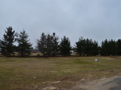 Lot 11 Buildable Rural Country Lot : Oxford : Marquette County : Wisconsin
