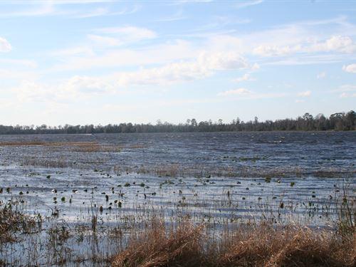 1.39 Acres - Starke : Starke : Bradford County : Florida