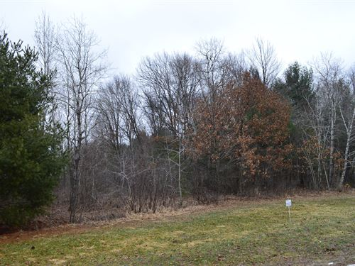 Lot 39 Buildable Rural Country Lot : Oxford : Marquette County : Wisconsin