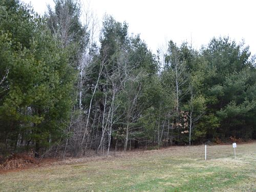 Lot 40 Buildable Rural Country Lot : Oxford : Marquette County : Wisconsin