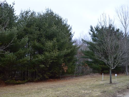 Lot 41 Buildable Rural Country Lot : Oxford : Marquette County : Wisconsin