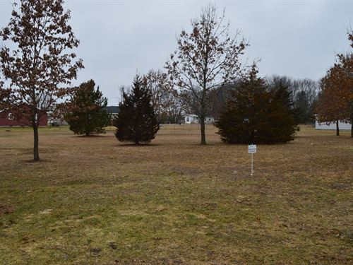 Lot 29 Buildable Rural Country Lot : Oxford : Marquette County : Wisconsin