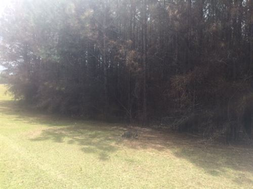Rural Home Site Or Mobile Site For : McComb : Pike County : Mississippi