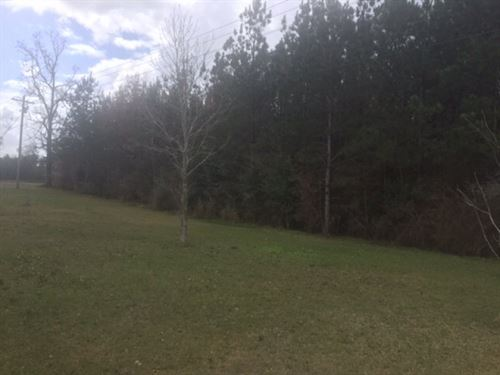 Small Acreage For Sale North Pike C : McComb : Pike County : Mississippi