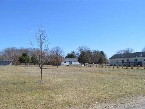 Lot 24 Buildable Rural Country Lot : Oxford : Marquette County : Wisconsin