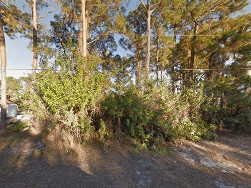 Vacant Land 4 Sale In Lehigh Acres : Lehigh Acres : Lee County : Florida
