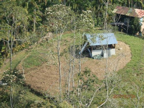 Mt. Starter Farm For The Adventurer : Tucurrique : Costa Rica