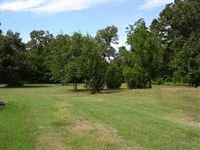 Country Home Lot : Powderly : Lamar County : Texas