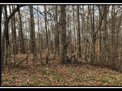 Tremendous Views 5 Acres : Patriot : Gallia County : Ohio