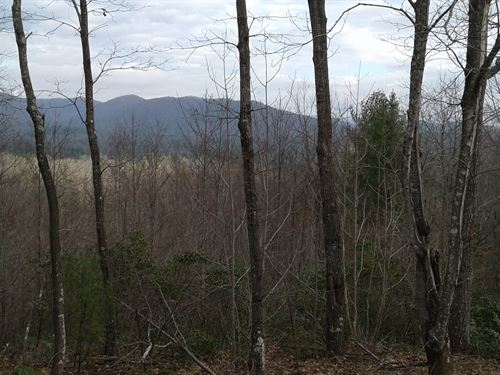Lot 20 Timber Ridge Subdivision : Ferguson : Wilkes County : North Carolina