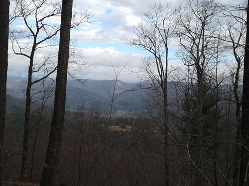 Lot 24 Timber Ridge Subdivision : Ferguson : Wilkes County : North Carolina