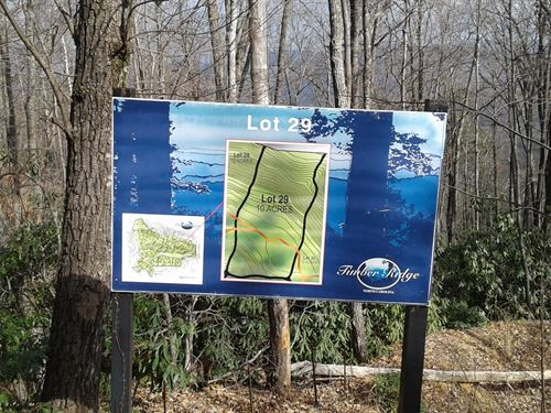 Lot 29 Timber Ridge Subdivision : Ferguson : Wilkes County : North Carolina