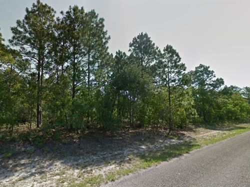 Residential Lot For Sale : Citrus Springs : Citrus County : Florida