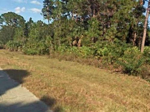 Hendry County, Florida $30,000 : La Belle : Hendry County : Florida