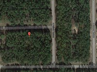 Vacant Lot For Sale : Citrus Springs : Citrus County : Florida