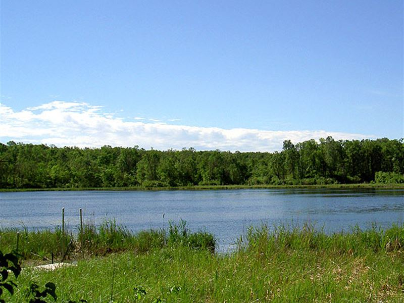 Beautiful 3.5 Acre Land On Lake : Lengby : Saint Louis County : Minnesota