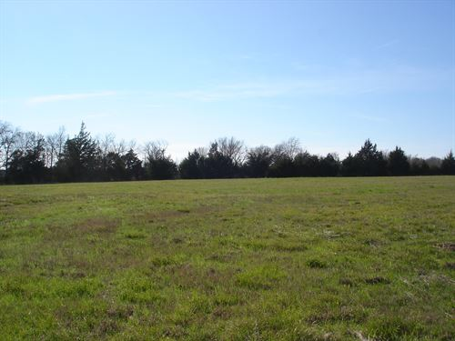Large Acreage : Paris : Lamar County : Texas