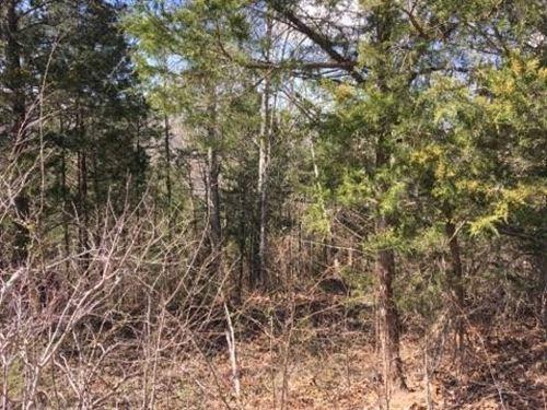 3.67 Acres - Glen Shaw Rd : Edmonton : Metcalfe County : Kentucky