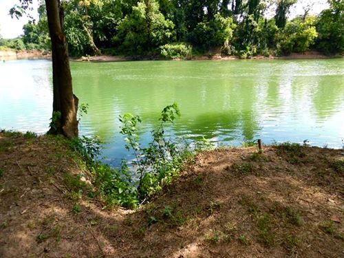 Camping Lot On River With Y/R Acces : Ravenden : Lawrence County : Arkansas